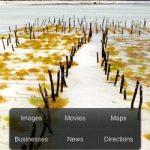 Aplicación móvil de Bing ya está disponible para iPhone y Android