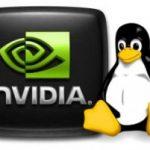 Nvidia se compromete a dar soporte gráfico a Linux