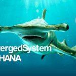 HP lanza ConvergedSystem 900 para SAP HANA