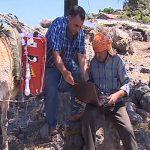 Turquía usa burros para su Internet móvil