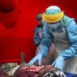El ébola, gancho también de cibercriminales