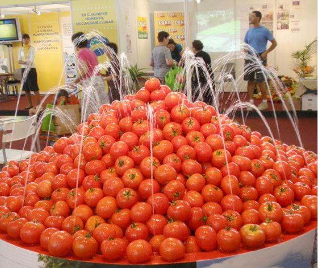 Fuente de tomates 1