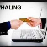 Seguridad: Si es contable, cuidese de los 'whaling'