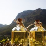 Usan software chileno para mercadear aceite doméstico no contaminante.