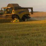 SAP gana fuerza en la reinvención de empresas en el sector agroalimentario
