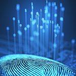 Tendencias emergentes para entender el nuevo paradigma digital