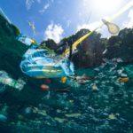 Cómo IBM ayuda a resolver el problema de la basura marina