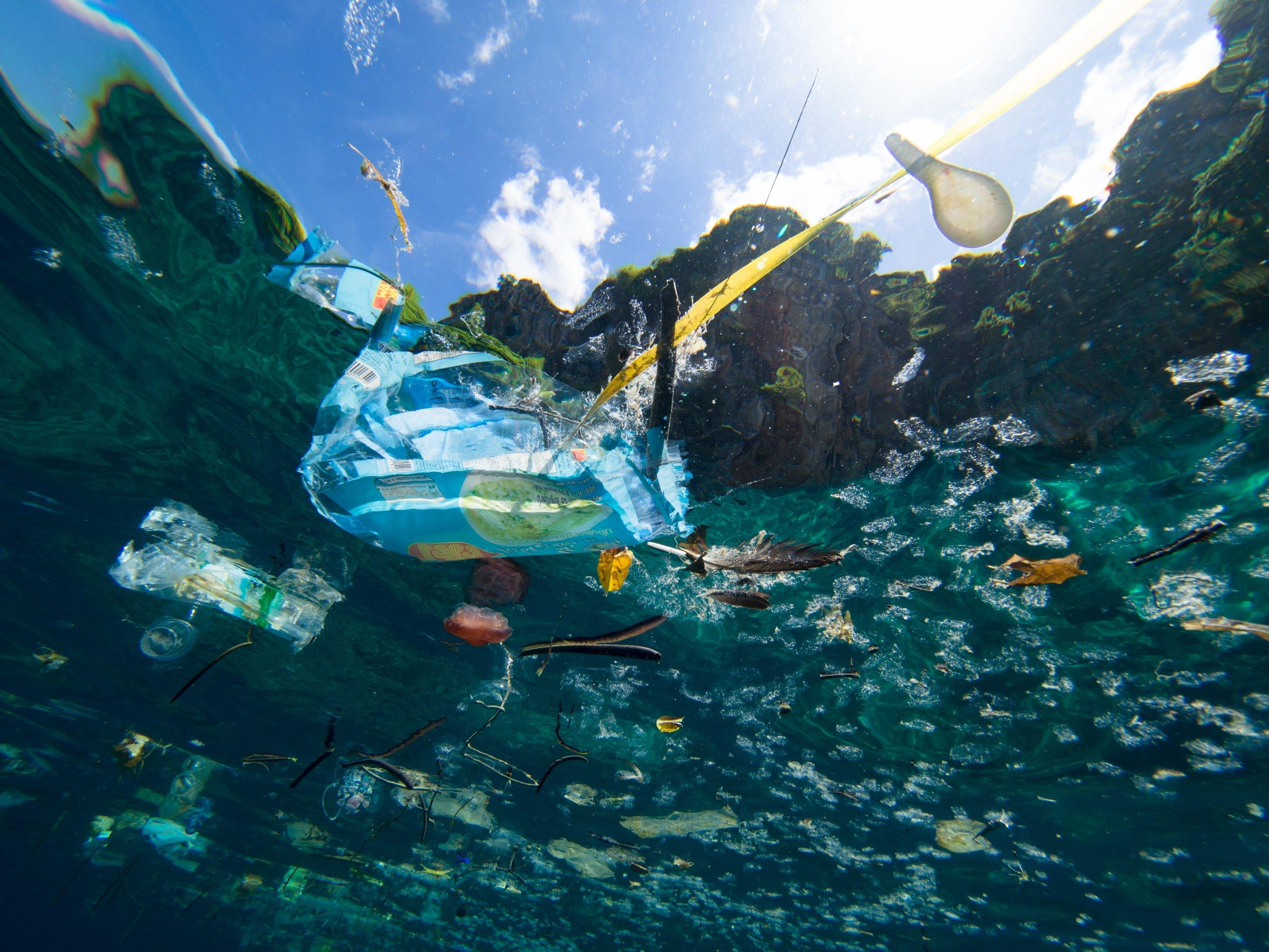 basura marina