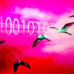 migración de un ERP